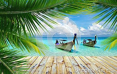 Tropical sea
