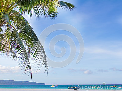 Tropical seascape with sky and palm tree