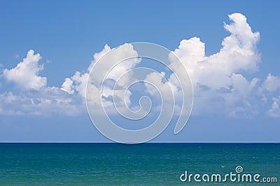Tropical Shoreline