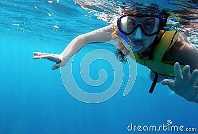 Tropical snorkeler