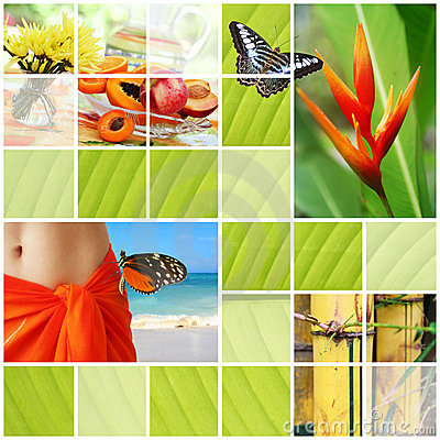 Free Tropical Summer Collage Stock Photography - 7849082