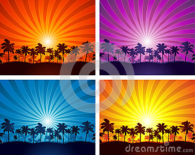 Tropical summer sunset palm tree silhouettes