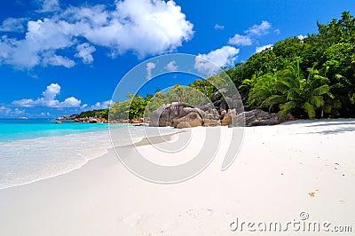 Tropical sunny beach