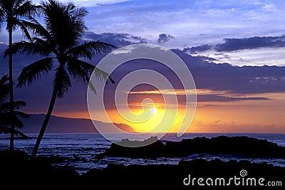 Tropical Sunset 1.3
