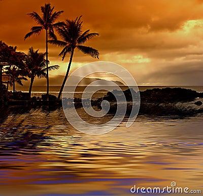 Free Tropical Sunset Stock Photo - 1636710