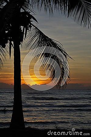 Tropical Sunset in Australia
