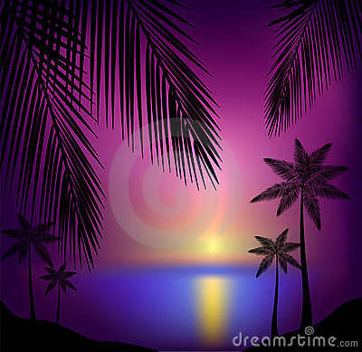 Tropical sunset beach