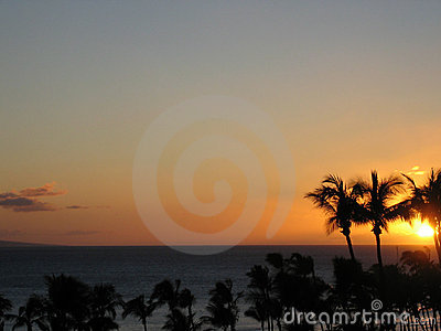 Tropical Sunset Landscape