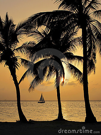 Free Tropical Sunset On Cayman Islands Royalty Free Stock Photos - 17857448