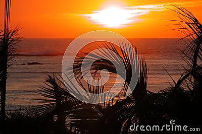 Tropical sunset over ocean