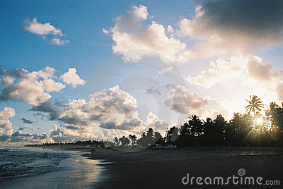 Tropical Sunset - Visible Film Grain.