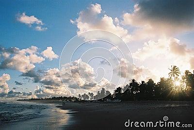 Tropical Sunset - Visible Film Grain.