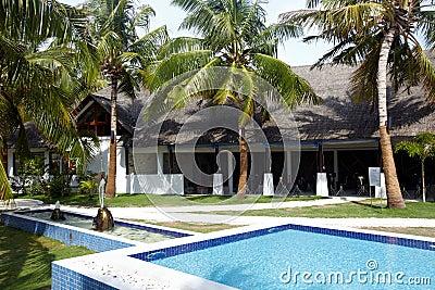 Tropical swiming pool
