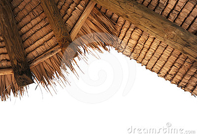 Tropical thatch roof