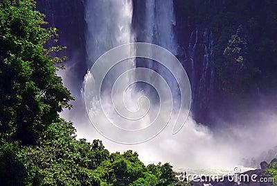 Tropical twin jungle waterfall