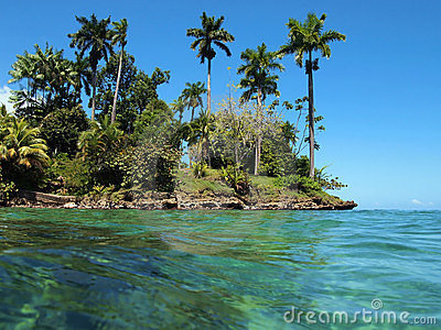 Tropical vegetation with turquoise water