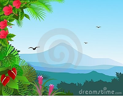 Tropical view background