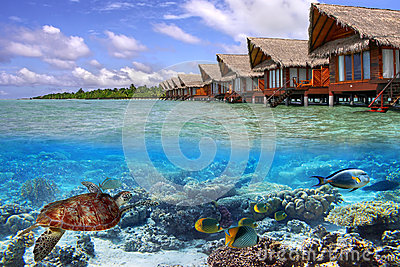 Tropical water of Maldives