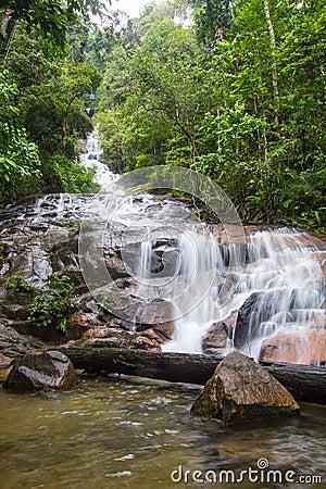 Tropical Waterfall Cascades