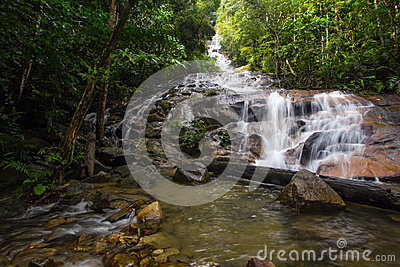 Tropical Waterfall Cascades