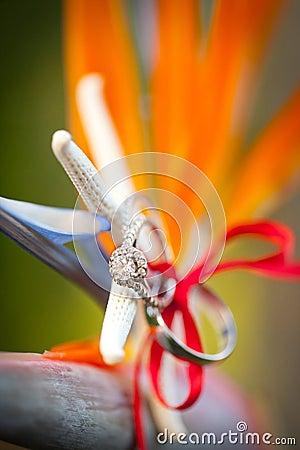 Tropical wedding rings
