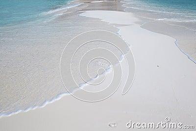 Tropical White Beach Maldives