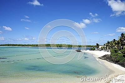 Tropical white sand beach, indian ocean