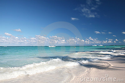 Tropical - White Sand Beach and Ocean