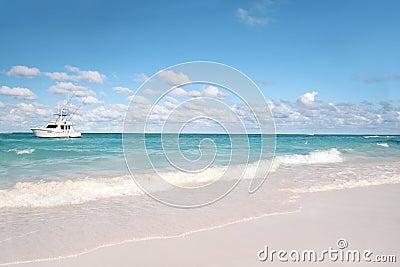 Tropical - White Sand Beach and Ocean