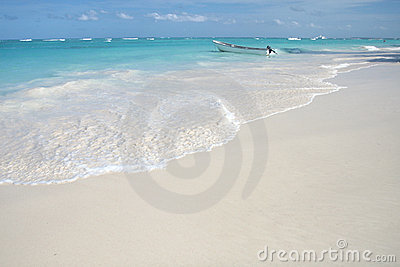 Tropical White Sand Beach and Ocean Background