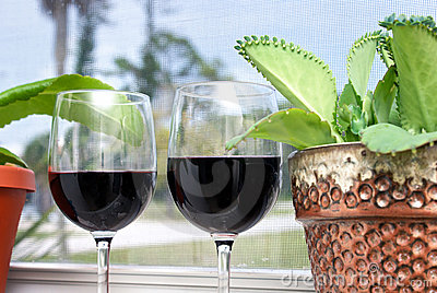 Tropical wine vacation