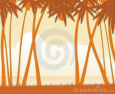 Tropical zone tour scenery