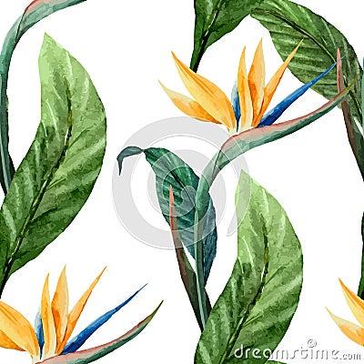 Free Tropicpattern7 Royalty Free Stock Image - 47397676