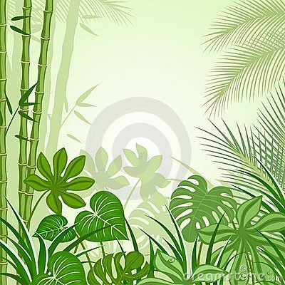 Free Tropics Stock Photography - 13863612