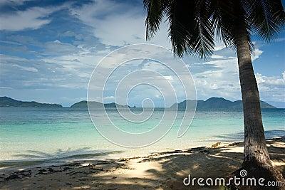 Tropikalny raj.