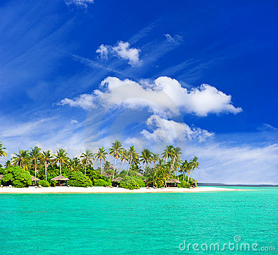 Tropisch strand met palmen