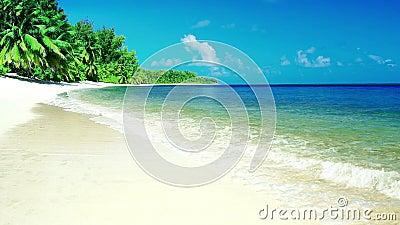 Tropische overzeese oceaangolvenbeweging in zonnig daglicht op strand, met overzees landeiland