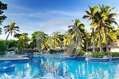 Tropischer Swimmingpool am Sonnenaufgang