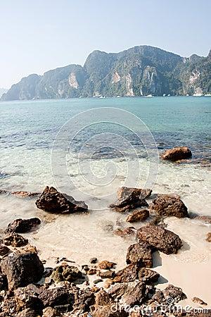 Tropisk strand