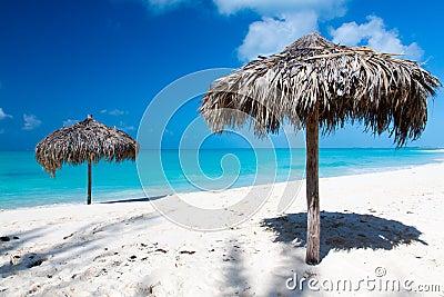 Tropisk strand med den vita sanden