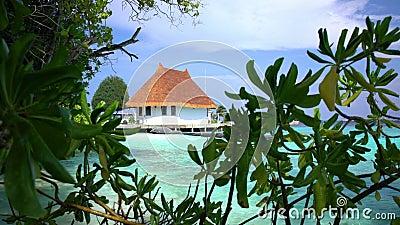 Tropiskt landskap med kojan och en strand lager videofilmer