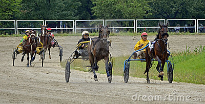 Trotting Editorial Stock Photo