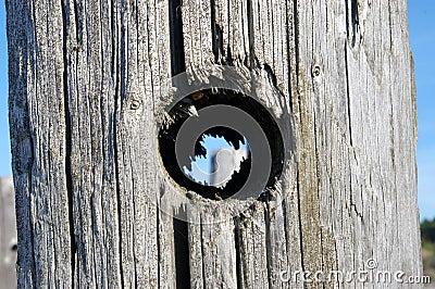 Trou dans le poteau en bois