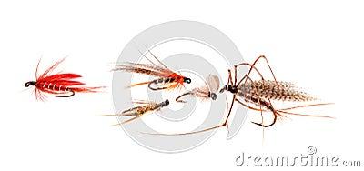 Trout Flies.