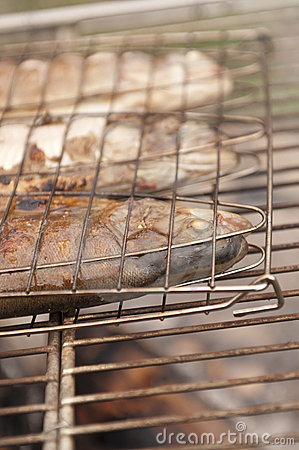 Trout Grilled on Campfire