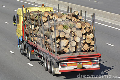 Truck with articulated trailer carrying tree trunks