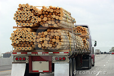 Truck Transporting Wood