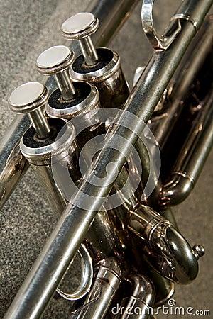 Free Trumpet Valves Royalty Free Stock Photo - 11598205