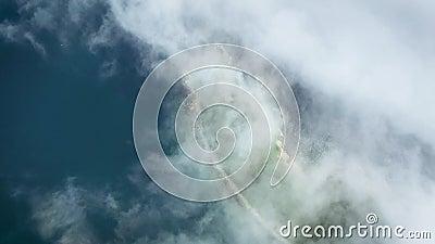 Trutnia krótkopęd wzdłuż wybrzeża Rosja na słonecznym dniu w mgle zbiory wideo