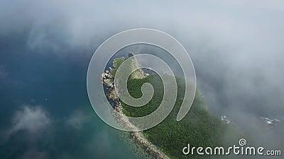 Trutnia krótkopęd wzdłuż wybrzeża Rosja na słonecznym dniu w mgle zbiory